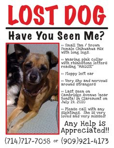 Lost Pet Flyers | Guardian Pet Sitters