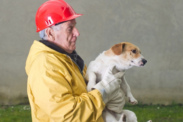 Preparing Your Pet For a Disaster