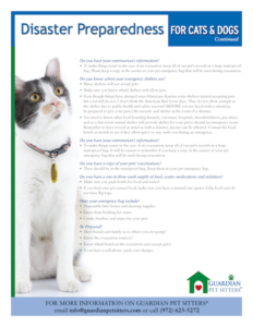 Disaster preparedness for cats and dogs