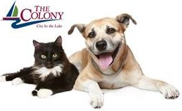 The Colony Animal Shelter